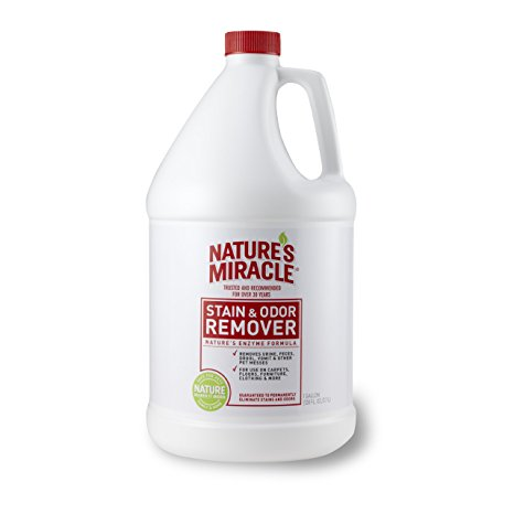 Nature's miracle original stain and odor remover Review