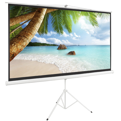 Best Home Projector Screen Reviews